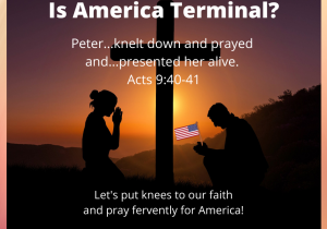 Is America Terminal blog meme